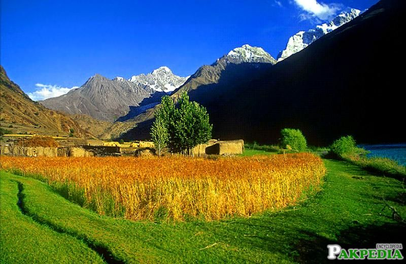 Chitral Valley Beautiful Form