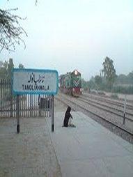 Tandlianwala