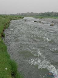 Haro River