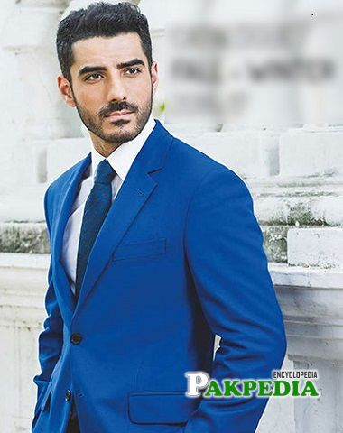 Adeel Hussain biography