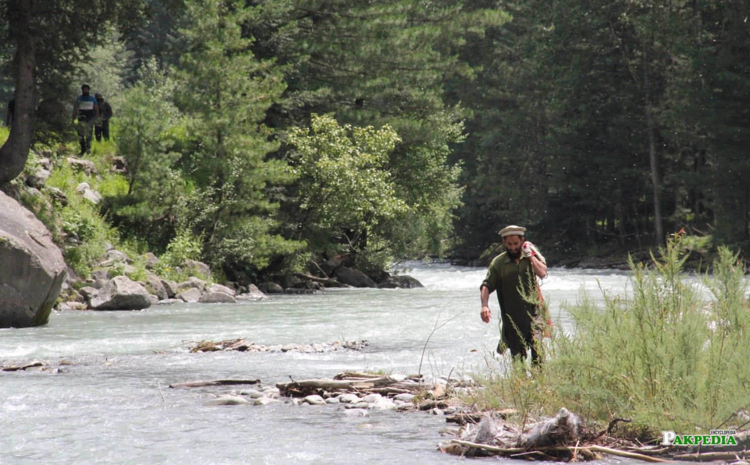 Trout fishing in River Panjkora