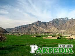 Chitral Valley Greenory
