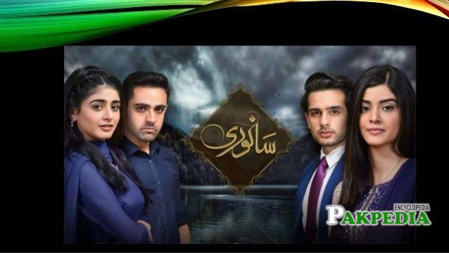 Zainab Shabbir Dramas