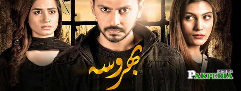 Faria Sheikh dramas