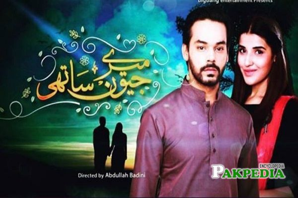 Gohar Rasheed Dramas