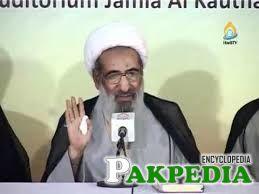 Ayatullah mohsin najafi while adressing