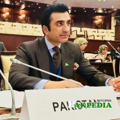 Ali Zahid Biography