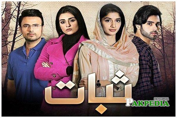 Ameer Gilani Dramas