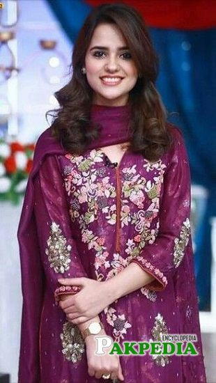 Rabya Kulsoom Rehan career