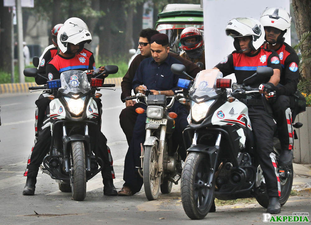 Dolphin Force going to snap checking