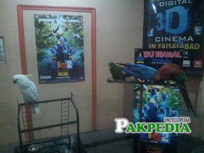 Faisalabad Cinema
