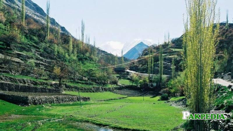 Nagar Valley in Gilgit-Baltistan