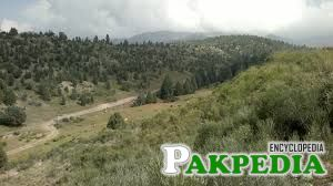 Shawal North Waziristan Bush mountain area ,,A tour with Rizwan Wazir