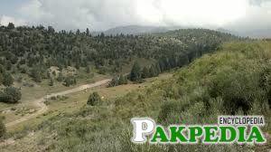 Shawal North Waziristan Bush mountain area ,,A tour with Rizwan Wazir