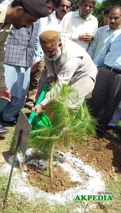 Amjad Mehmood Chaudhry while planting trees