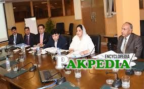 Mrs Anushay rehman and CEO of ignite in meeting