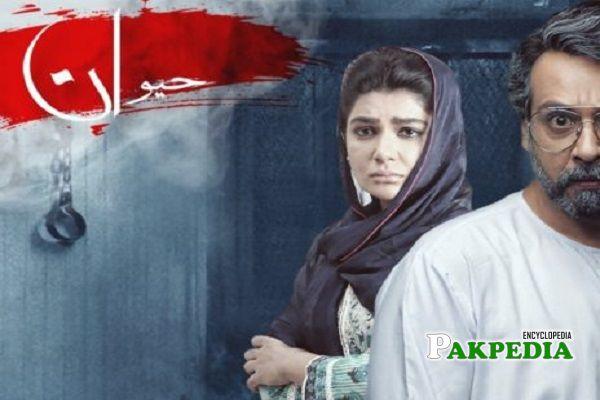 Maryam Noor Dramas
