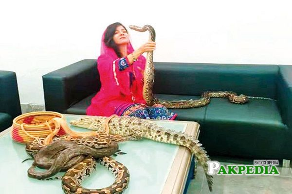 Rabi peerzada threatened Indian PM with snakes