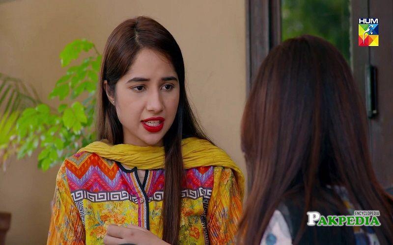 Actress, Model and host Sabeena farooq