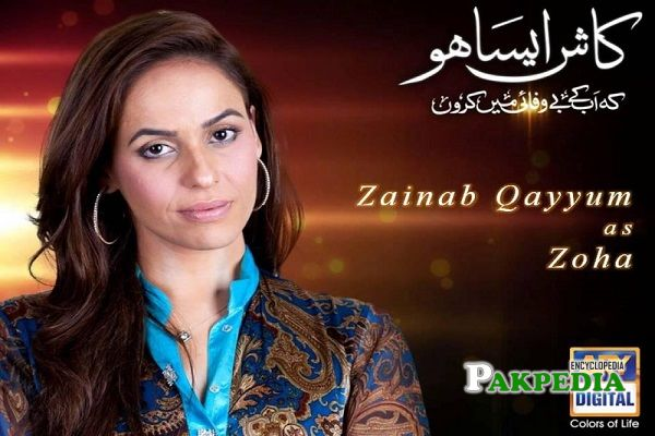Zainab Qayyum Dramas