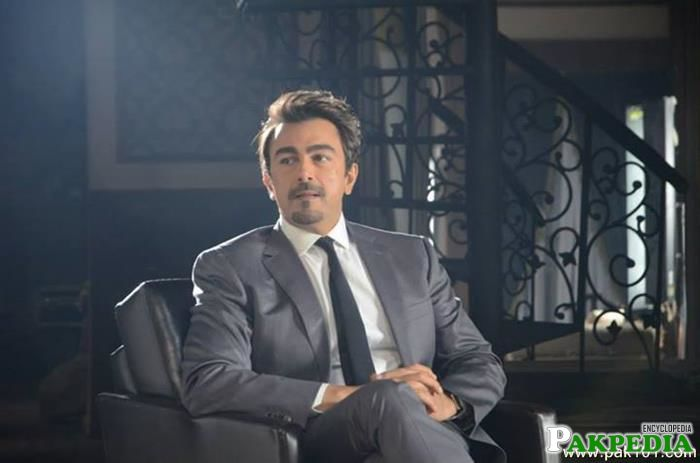 Shaan Shahid Television Host