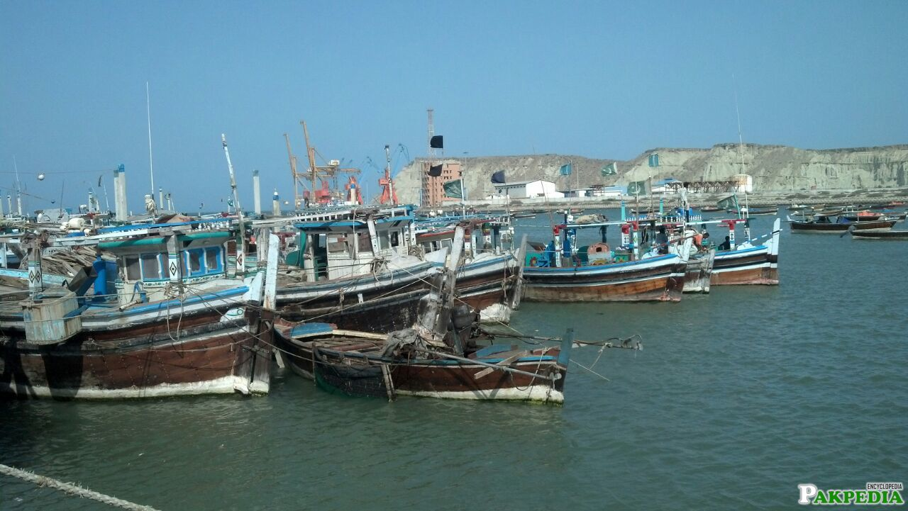 Pasni Fishing Area