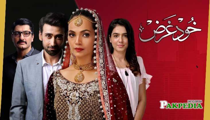 Amina Sheikh Dramas