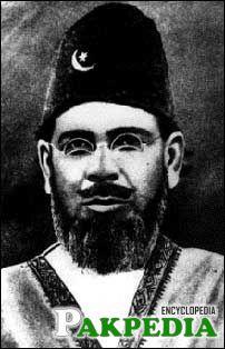 Moulana Mohammad Ali Joher Politician