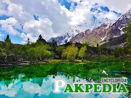 Naltar Valley Outstanding View