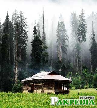 Tourist Place In Kashmir