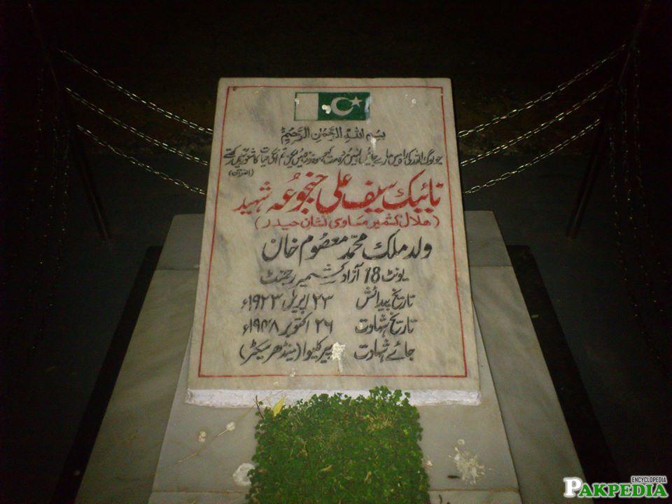 Saif Ali Janjua's Grave