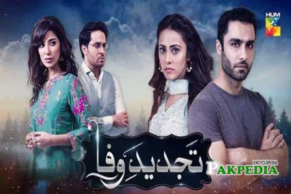 Ainy Jaffri Dramas