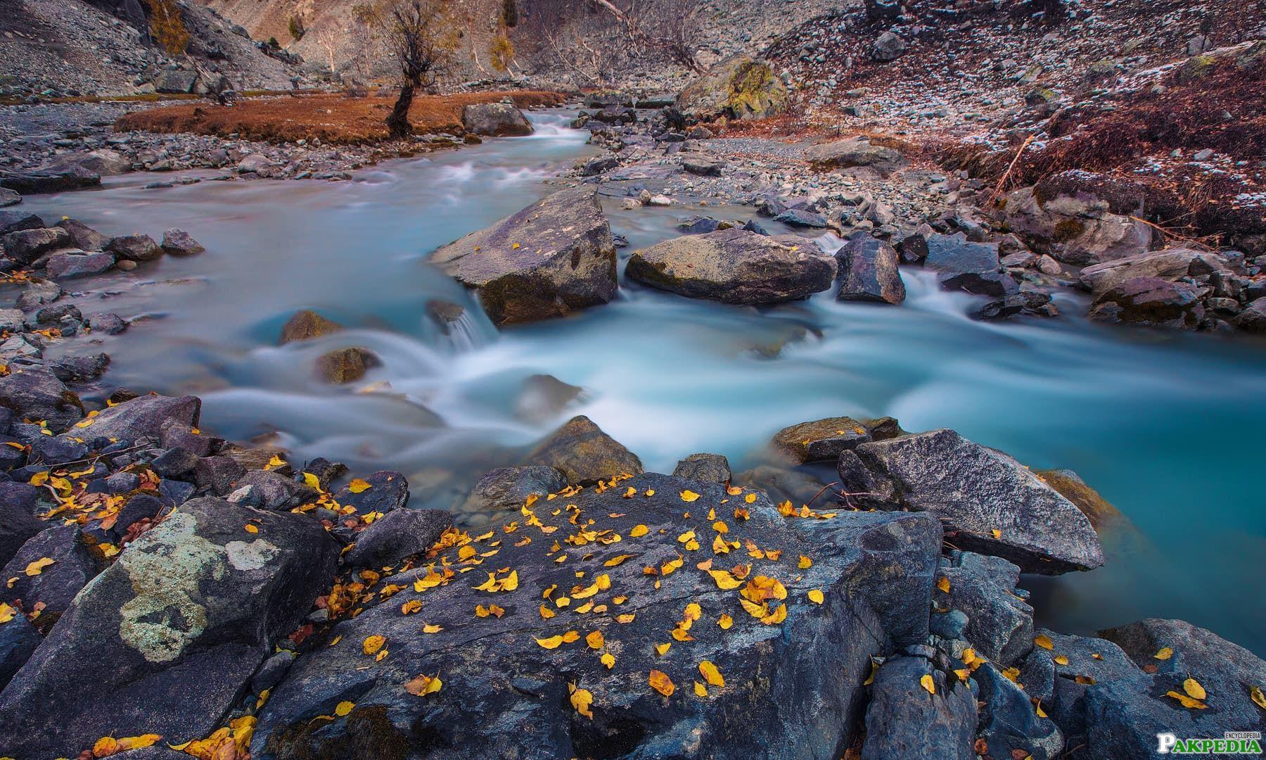 Naltar Valley Stones