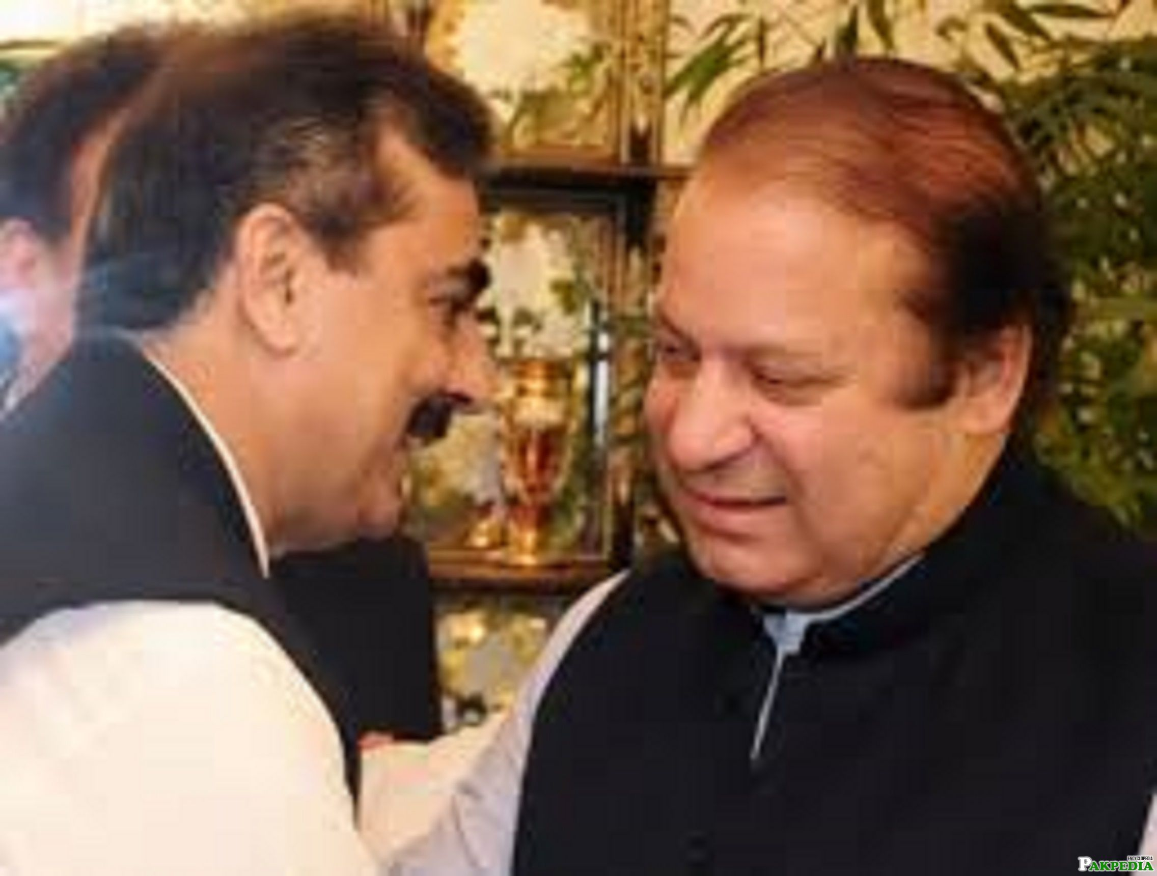 PM Nawaz reaches Gilani house, greets Yousaf Raza over son's recovery