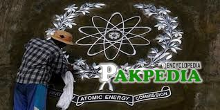 PAEC to expand nuclear energy programme, two more nuclear power plants