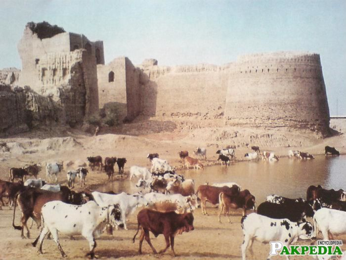 Kharan Old Point