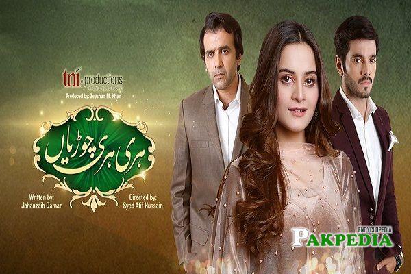 Hassan Ahmad Dramas