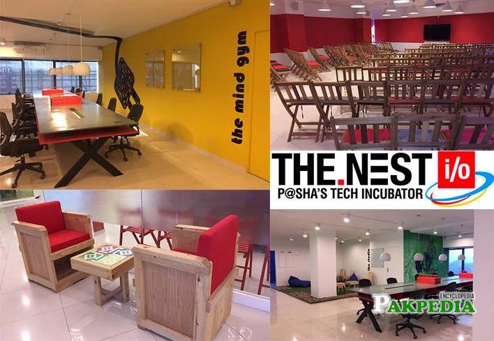 Jehan Ara founded Nest