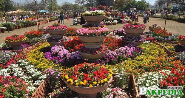 Annual Flower Show Jilani Park