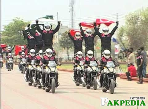 A Best prade by Dolphin Force