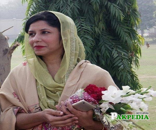 Sabeen Gul Khan is working as a Member of the Punjab Examination Commission Punjab