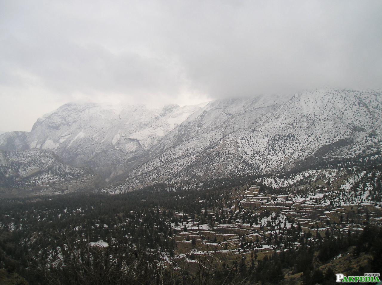 Ziarat City View