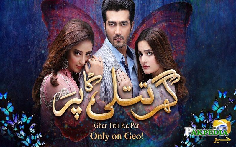 Sanam Chaudhry Dramas