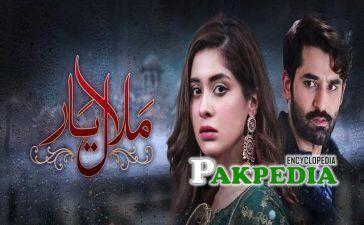 Seemi Pasha Dramas