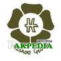 Hashoo group's logo