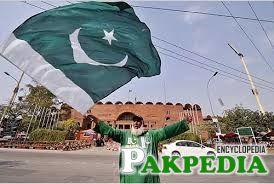 Proud display of Pakistani flag - Photo of Chacha Cricket waving Pakistani flag
