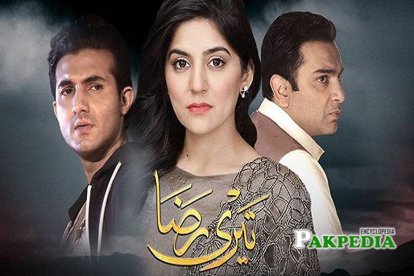 Shehroz Sabzwari Dramas