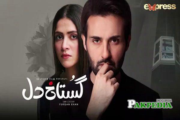 Sadia Ghaffar Dramas