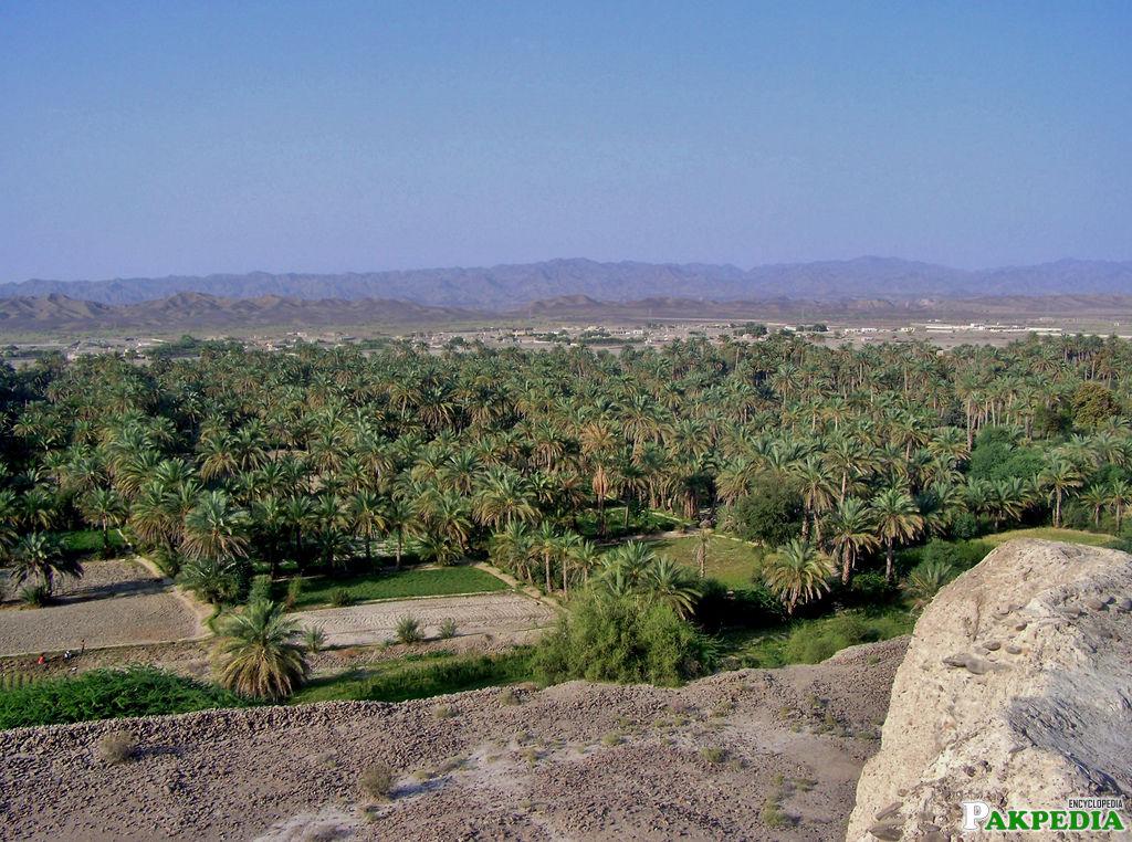 Turbat What A View
