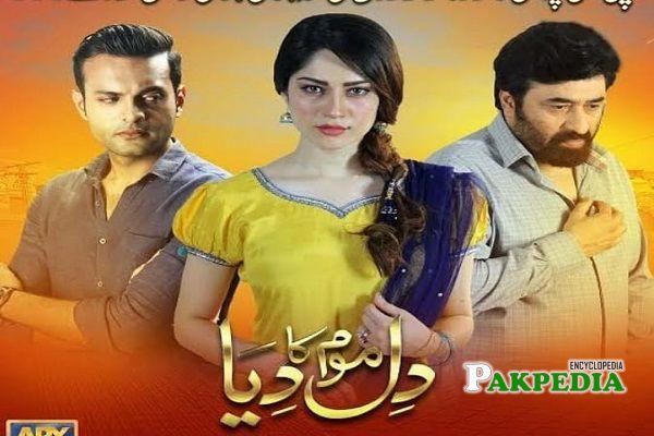 Hassam Khan Dramas